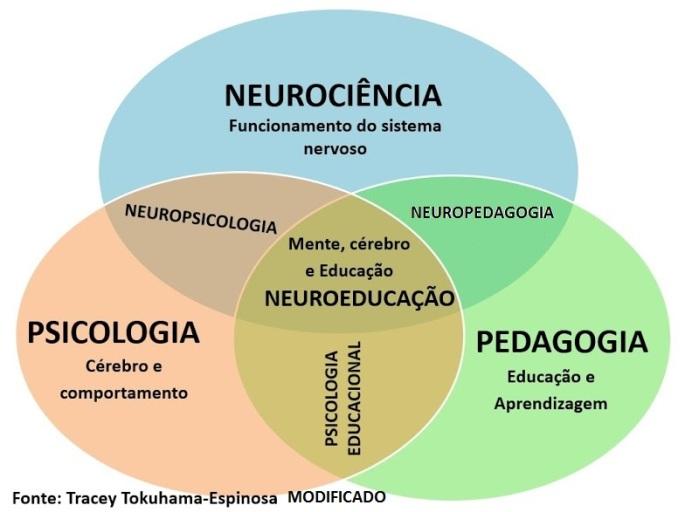 Neuroeducação-figura